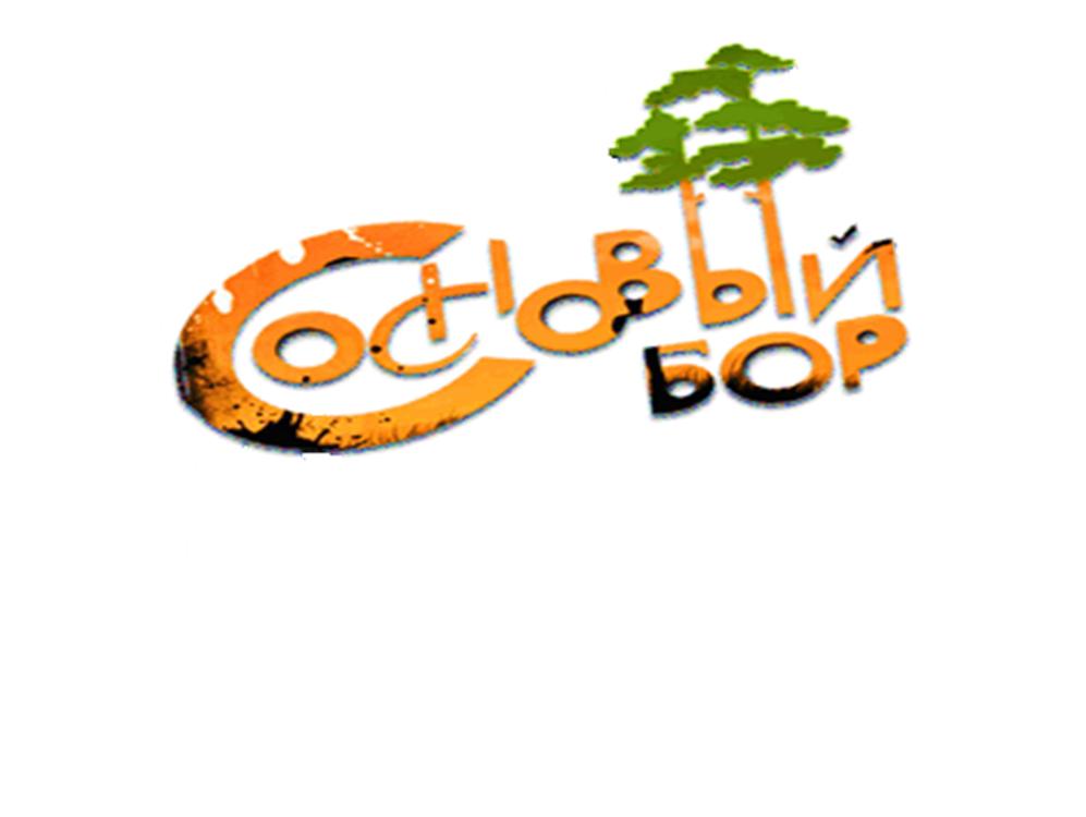 Детский оздоровительный лагерь «Сосновый бор»